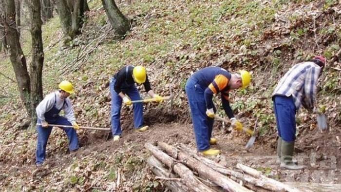 Savt/Forestali: «bene il Piano Lavori, ma restano molte criticità»