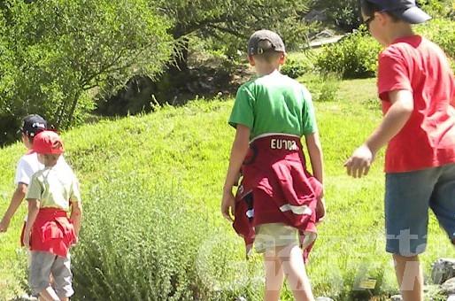 """""""Estate in famiglia"""": da oggi 15 appuntamenti per conoscere la natura"""