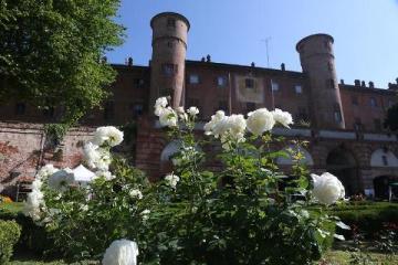 """MONCALIERI – Spettacolo al giardino delle rose: """"In viaggio per la Mancia"""""""