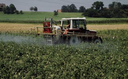 Agricoltura, tra futuro e consumo critico