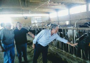 Isolabella capitale di salumi e latte di qualità