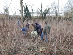 Trofarello - trenta volontari ripuliscono il territorio dall'immondizia abusiva