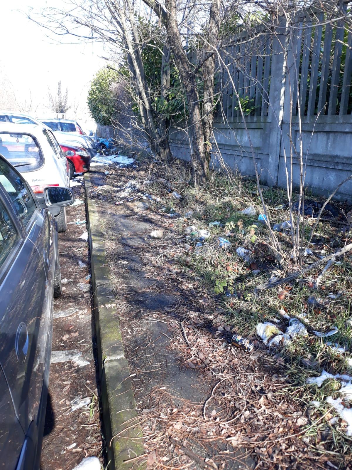 Nuovi mucchi di spazzatura a Trofarello da ripulire, in zona industriale