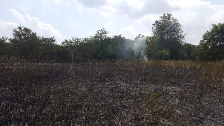 TROFARELLO – Un incendio devasta un campo agricolo